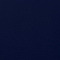 Bronco Blauw 6629